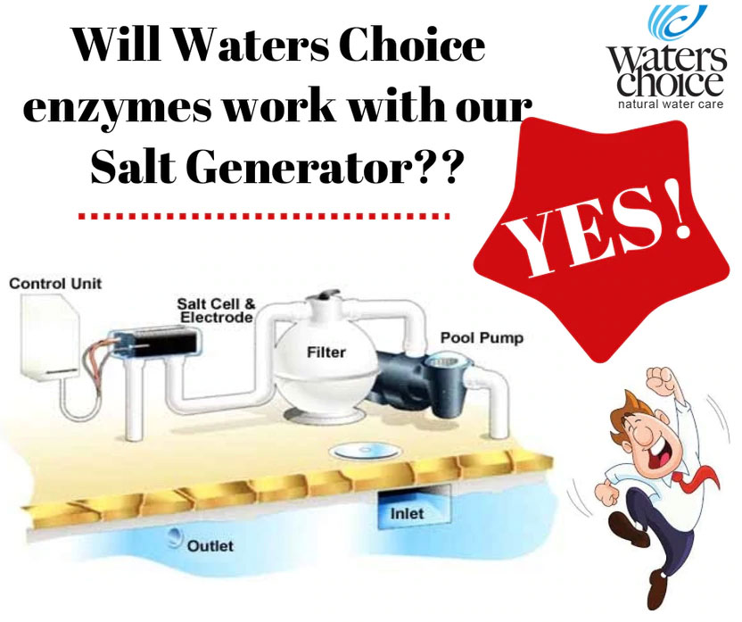 Will Enzymes Work With Salt Generators?