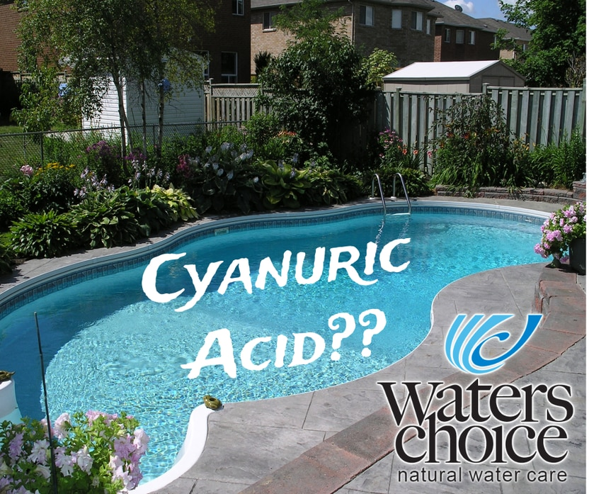Cyanuric Acid (cy*an*uric acid) Benefits and Misconceptions